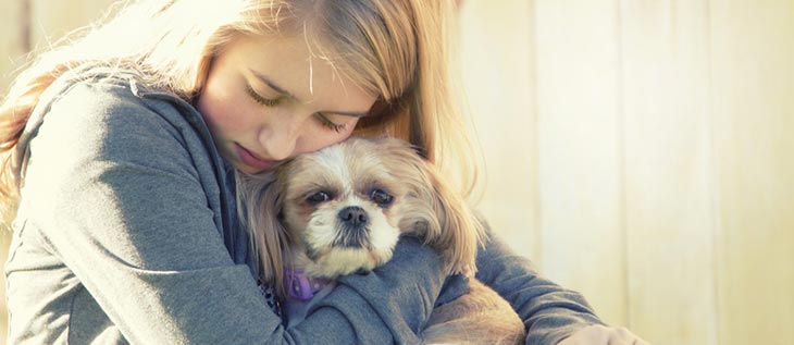 Prevent dog bites with these 3 tips